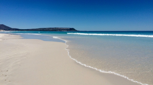 Our beautiful Noordhoek Beach, for surfing, swimming & horseback riding.